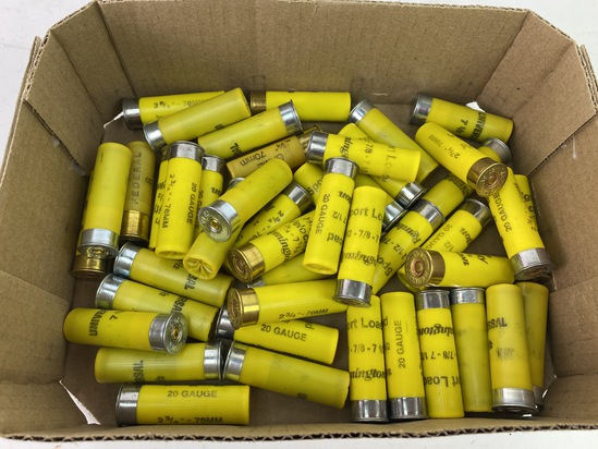 """45 Shotshells of 2-3/4"""" 20 GA. Shotgun Ammunition"""