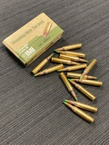 14rds. IMI 5.56mm M855 62gr. FMJ Green Tip Ammunition