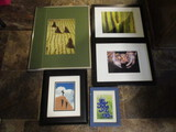 Framed and Matted Nature and Landscape Photographs