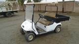 Saddle Back Utility Golf Cart,
