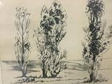 Framed original wood cut block print of trees - Poplars - signed by artist John Nielson.
