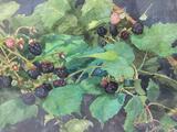 Framed original blackberry bush artwork, signed by PNW artist Carol Janda, approx. 29x24x2 inches.