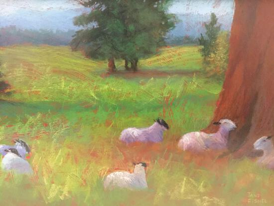 Framed original pastel drawn sheep artwork by Jane Fishel