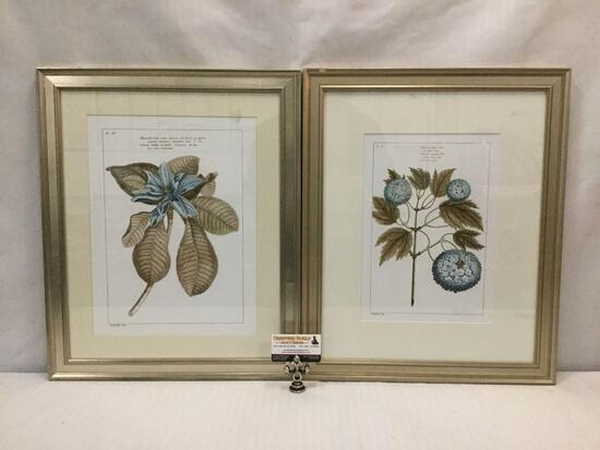 Pair of framed Italian floral scientific drawings in color