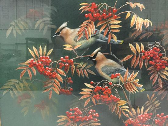 Framed 1993 S.D.Bourdet print of 2 birds perched on a berry bush.
