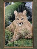 Framed mountain lion / couger print by J. Tift (1991)