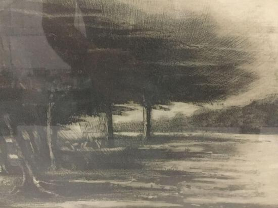 """""""Group of Trees in the Meadow"""" 1977 print #'d 7/20 and signed by Timothy J Bazzone"""