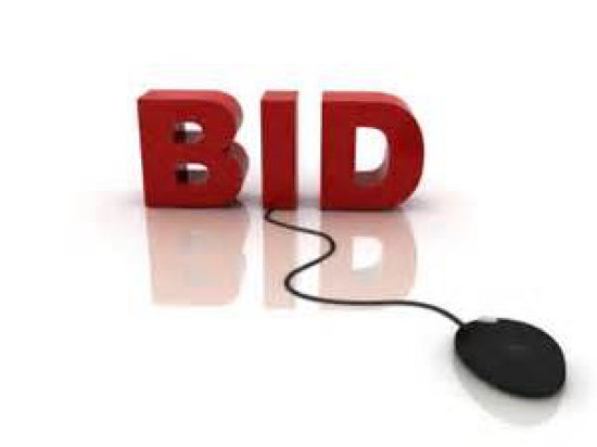 Live bidding on catalog items will BEGIN AT NOON
