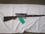 Remington Nylon .22LR ser. 2575743