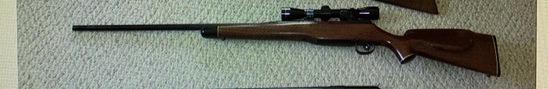Custom built model of 1917 Eddystone medium barrel, on rise bolt, timney trigger, rust proof barrel