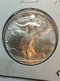 1994 Silver American Eagle