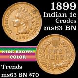 1899 Indian Cent 1c Grades Select Unc BN
