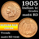 1905 Indian Cent 1c Grades Choice Unc RD (fc)