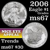 2006 Silver Eagle Dollar $1 Grades ms69