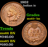 1902 Indian Cent 1c Grades GEM+ Unc BN