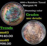 1880-s Rainbow Toned Morgan Dollar $1 Grades Unc Details