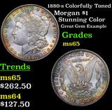 1880-s Colorfully Toned Morgan Dollar $1 Grades GEM Unc
