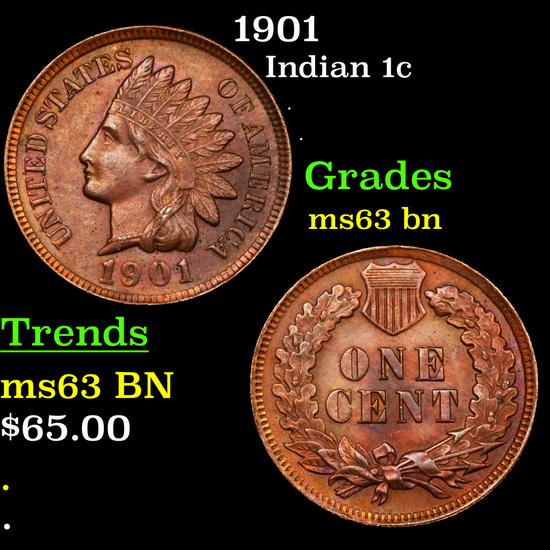1901 Indian Cent 1c Grades Select Unc BN
