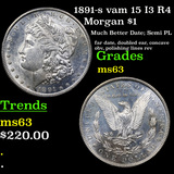 1891-s vam 15 I3 R4 Morgan Dollar $1 Grades Select Unc
