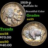 1919-p Buffalo Nickel 5c Grades Choice AU