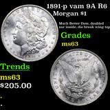 1891-p vam 9A R6 Morgan Dollar $1 Grades Select Unc