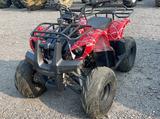 TAO TAO 125CC ATV 2WD