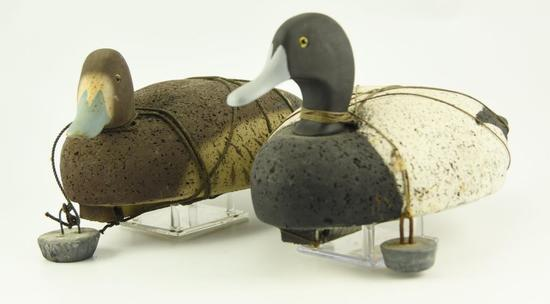 Lot #300 -  (2) Dozen Cork Body Bluebill decoys to include sixteen Drakes and eight hens all