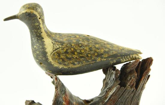 "Lot #363 -Golden Plover Cape Cod, MA ""Wind Bird"" Fine original paint in Spring plumage hallowed"