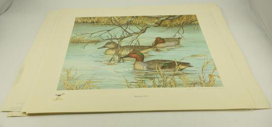 """Black Ducks at Davis Creek"" by Margaret Blair, ""Backwaters by Art Cook"", (2) ""Backwater Teal by"
