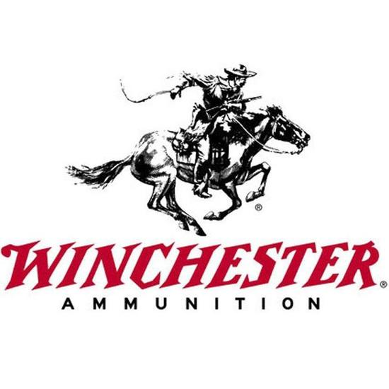 Lot of 100 rounds of new-in-the-box Winchester .222 Rem cal 55 gr FMJ rifle ammo
