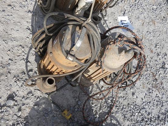 (2) 2'' GR Sub Pumps
