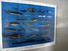 A Jackpot of Jensen Fish Decoys, John Jensen, Signed, No. 978 of 1000