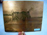 Moose Copper Etching