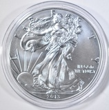 2013-W BURNISHED AMERICAN SILVER EAGLE  IN CAPSULE