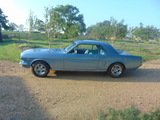 1966 FORD MUSTANG  EXTENSIVE RESTORATION/ IMMACULATE