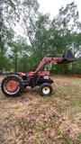 *NOT SOLD* MASSEY FERGESON DIESEL TRACTOR WITH BRUSHHOG LOADER
