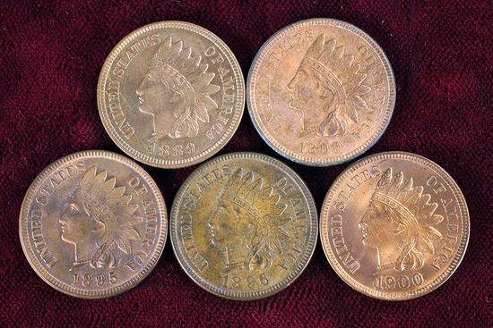5 Indian Head Pennies; 1889, 1890,1895,1896,1900
