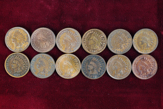 12 Indian Head Pennies various dates from 1880 to 1899