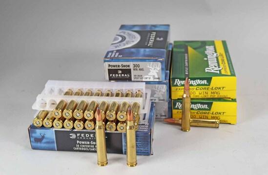 Federal & Remington .300 Win Mag Ammo, 120 Rds.