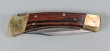 Buck #110 Folding Knife - 4 Pins