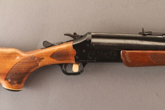 SAVAGE MODEL 24 DELTA SERIES M, 22LR/20GA O/U RIFLE/SHOTGUN