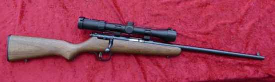 Savage 22 cal Cub Youth Rifle     Auctions Online | Proxibid