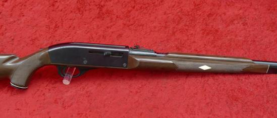 Remington Nylon 66 22 cal Rifle