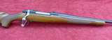 New Ruger M77 Hawkeye in 257 Rbt cal