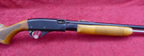 Remington Model 572 in Raven Wing Black