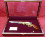 Special Comm Spirit of American Indian Colt Walker