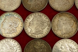 Lot of 20 Morgan Silver Dollars (C)