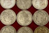 Lot of 20 Mixed Morgan Silver Dollars (E)