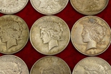Lot of 20 Mixed Silver Peace Dollars (G)
