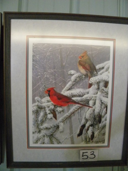 Framed Print: Marc Hanson, Mixed Woodland-cardinals, With Certificate Of A
